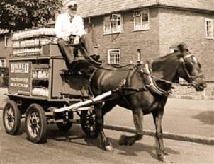 d-horse-milkcart