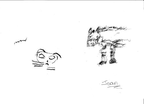 Norah - cat & Jean - Horse